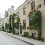 Washington_Mews_Greenwich_village
