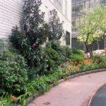 Dorchester Towers condo-155 West 68th Street New York NY 10023