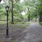 Central Park NYC after Hurricane Irene!