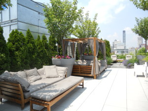 Roof Deck at Gramercy Starck Condos